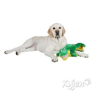 Kyjen Company Long Body Gator Squeaker Mat Dog Toy
