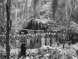 Fordlandia: The Rise and Fall of Henry Fords Forgotten