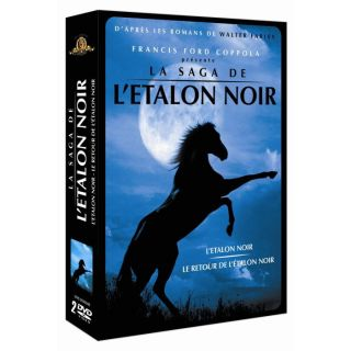 DVD DESSIN ANIME DVD Létalon noir ; Le retour de létalon noir
