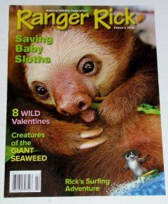 Ranger Rick Magazine (February 2012 Issue)   Saving Baby Sloths, 8