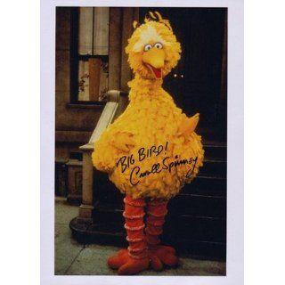 Spinney Signed Sesame Street Big BiRD Full Length UACC RD 244 Iada