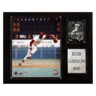 MLB 12 x 15 in. Bob Gibson St. Louis Cardinals Player Plaque at