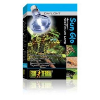 Exo Terra Sun Glo Daylight Halogen Lamp   25W   Reptile Supplies at